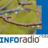Hundert Sekunden Leben Podcast Download