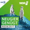 RedeZeit im WDR 5 - Radio zum Mitnehmen Podcast Download