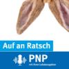 Auf an Ratsch - Der Menschen-Podcast der PNP