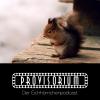 Provisorium Podcast Download