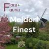 Meldorf Finest