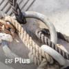 ERF Plus - Beim Wort genommen (Podcast) Podcast Download