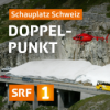 Doppelpunkt Podcast Download