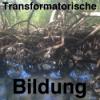 Transformatorische Bildung Podcast Download