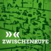 Zwischenrufe – Der grüne Politikpodcast aus Sachsen Podcast Download