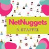 NetNuggets