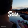 SEIN Podcast Download