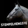 Pferdemenschen - Reitsportfamilien in Deutschland