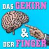 Das Gehirn und der Finger