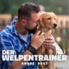 Der Welpentrainer - Der Podcast mit André Vogt