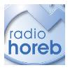 Radio Horeb, LH-Christ und Welt Podcast Download