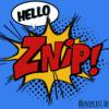 Podcast – Znipcast – Podcast der Znip Academy