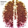 Braincast Podcast Download