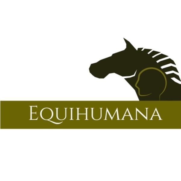 Pferdewissen für die Hosentasche
