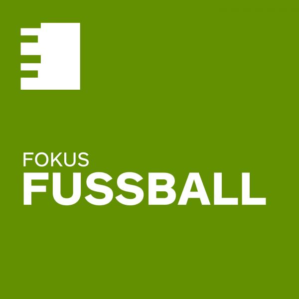 Fokus Fußball