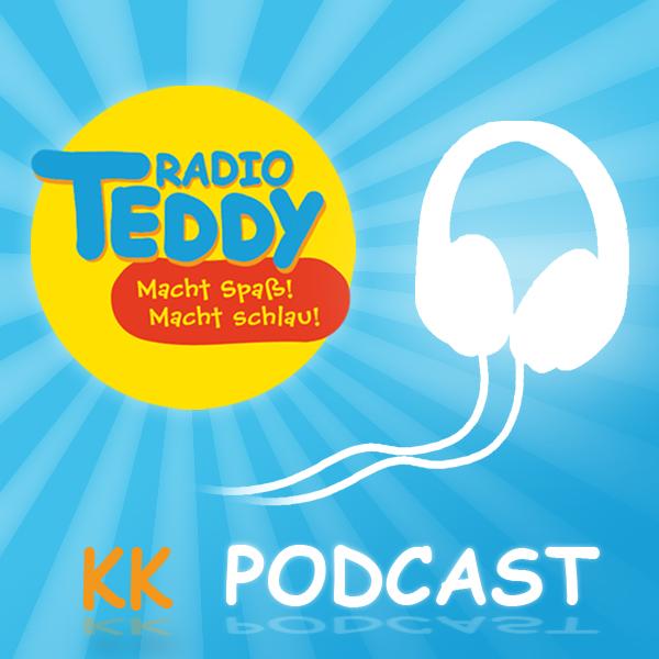 Radio TEDDY KiTa Kabelsalat