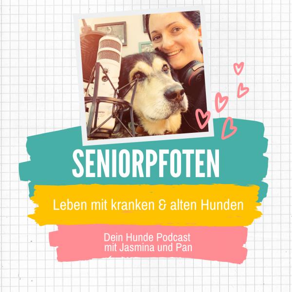 Seniorpfoten - Leben mit kranken & alten Hunden