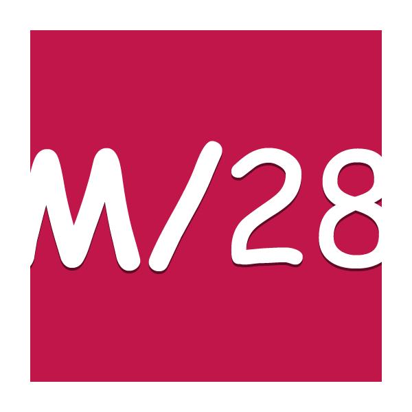 Meta 28