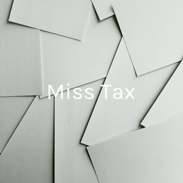 Die Steuererklärerin