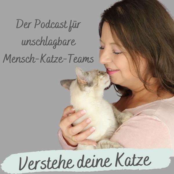 Verstehe deine Katze Podcast, Katzenverhalten verstehen, Katzenpsychologin Katrin Knispel