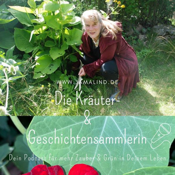 Die Kräuter- & Geschichtensammlerin