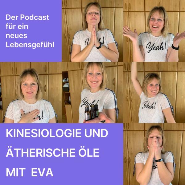Ausgeglichen - kraftvoll - entspannt - Kinesiologie mit Eva Niggl