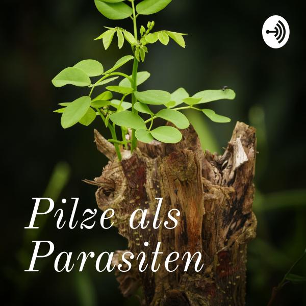 Pilze als Parasiten