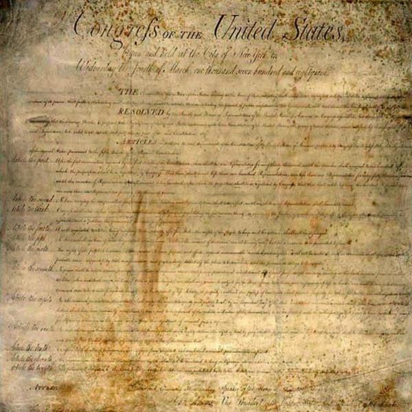 Die Amerikanische Verfassung