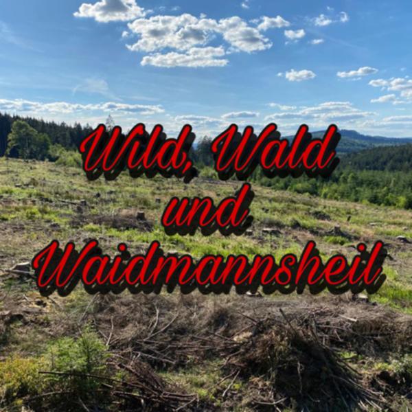 Wild, Wald und Waidmannsheil
