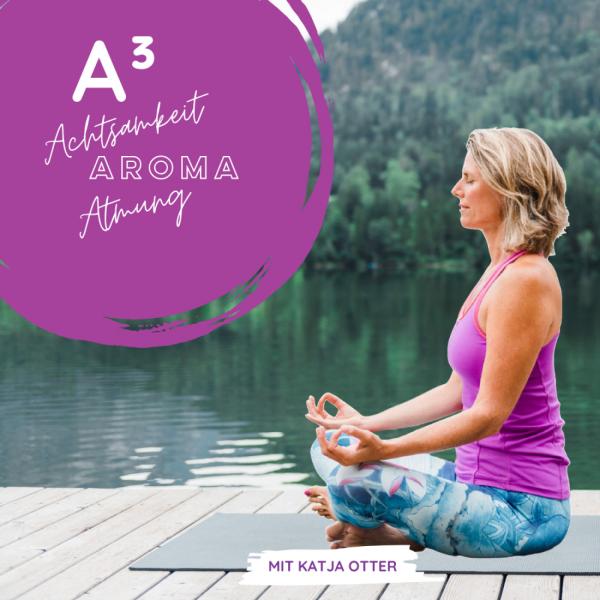 Mindfulness Audio