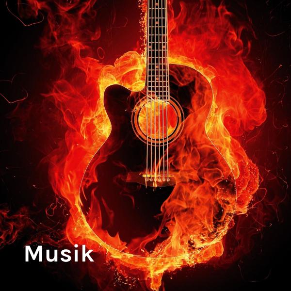 Musik - Verzweiflung, harte Arbeit und Erfolg (by Maxus Juli)