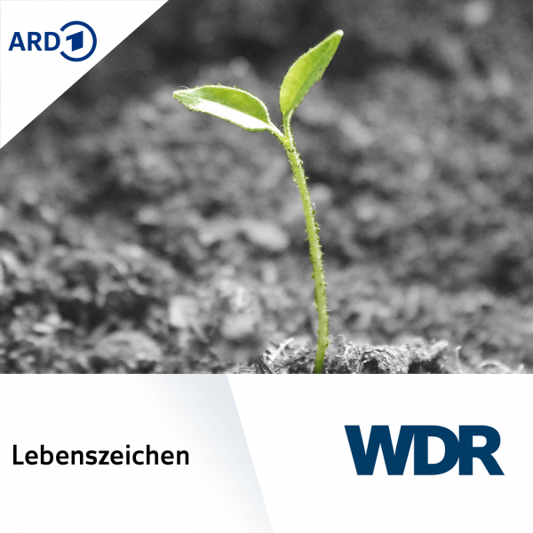 Wdr Podcast Download
