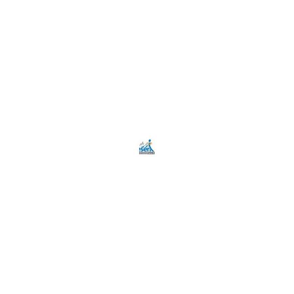 audio –  (.mp3)