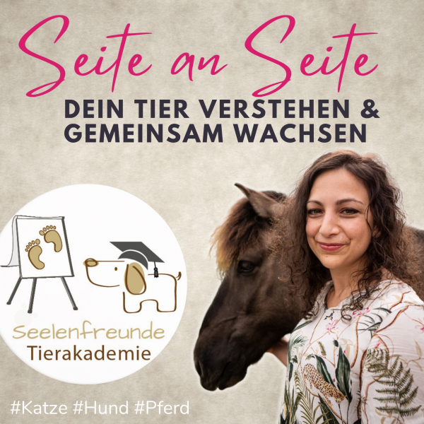 Seite an Seite | Dein Tier verstehen & gemeinsam wachsen (Tierkommunikation und mehr)