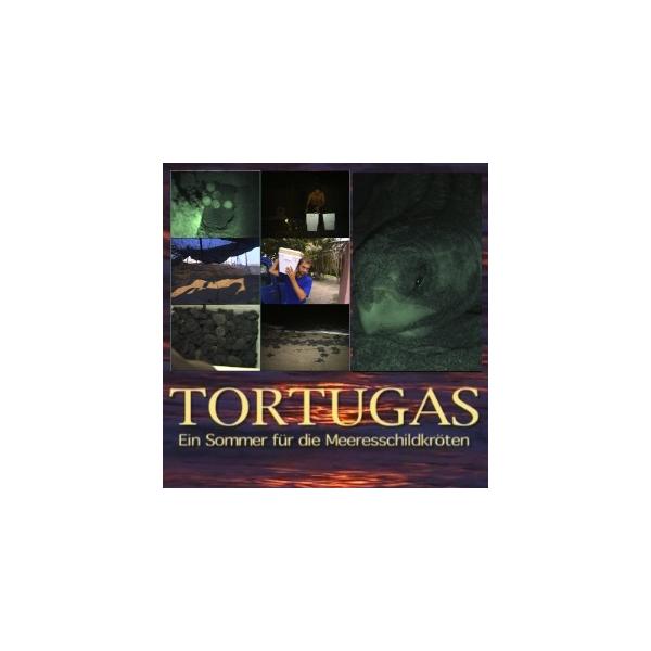 Tortugas - ein Sommer für die Meeresschildkröten