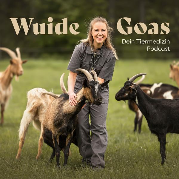 Wuide Goas- dein Tiermedizin Podcast