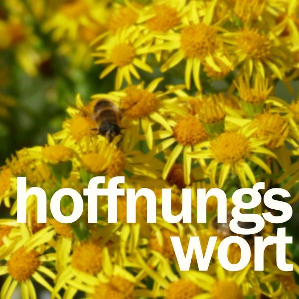 Hoffnungswort - Predigten von Pfarrer Andreas Roß