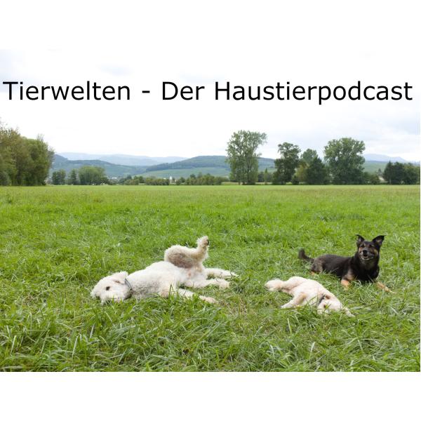 Tierwelten - Der Haustierpodcast