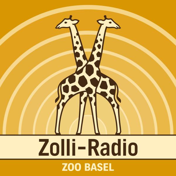 Zolli-Radio