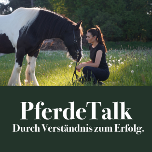 PferdeTalk - Durch Verständnis zum Erfolg