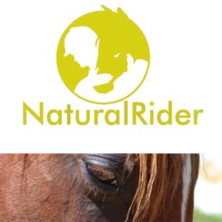 Naturalrider modernes neues englisch Reiten