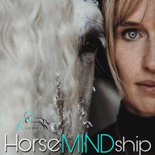 HorseMINDship