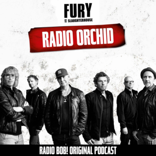 Radio Orchid – der Fury in the Slaughterhouse Podcast bei RADIO BOB!