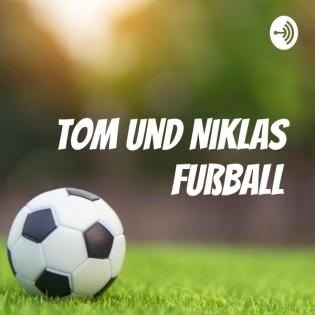 Tom und Niklas Fußball