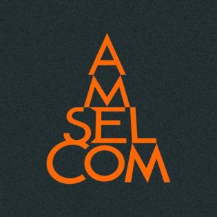 Amselcom's Ungeteilte Aufmerksamkeit