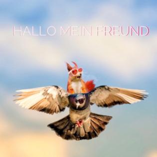 Hallo mein Freund