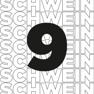 Schwein9 - Der Ulmer Baukultur-Podcast