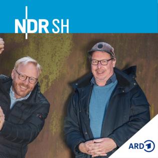 Kunst mich mal! - Kulturpodcast von NDR Schleswig-Holstein