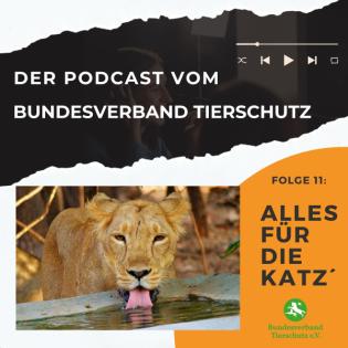 Lietz und Lotz