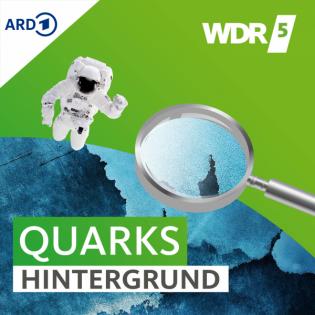 Quarks Daily